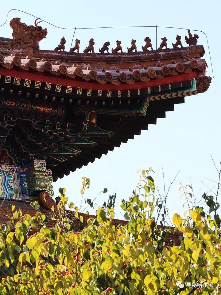 寻秘——哈尔滨老建筑背后的故事(080)文庙暨黑龙江省民族博物馆