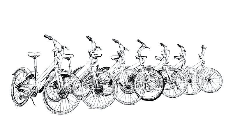 哈尔滨 自行车